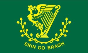 Erin Go Bragh medium table flag